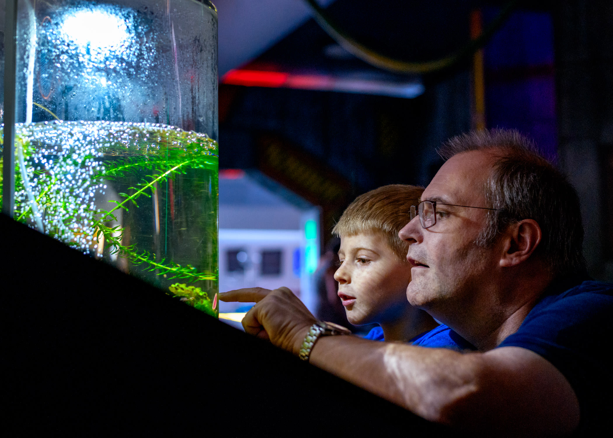 Son & Father looking at aquarium