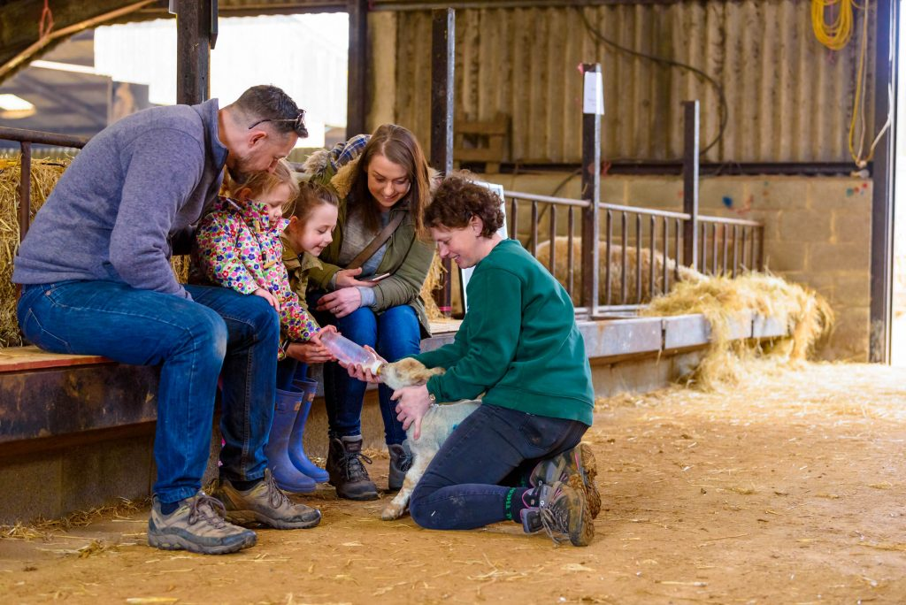 Event Photographer Alexandra Tandy captures the moment a family bottle feeds a lamb at Hadsham Farm open day