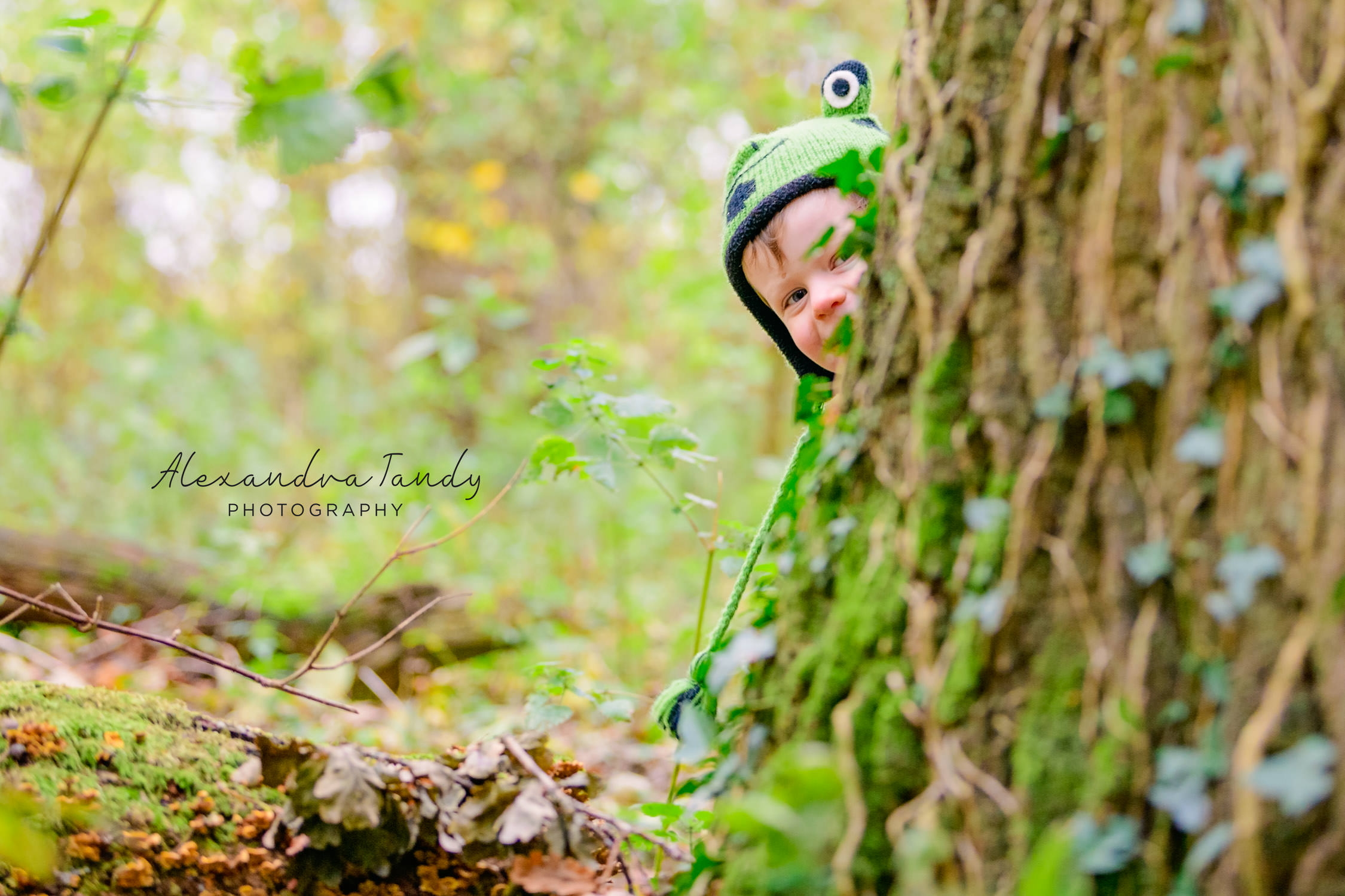 Boy peering round large tree trunk