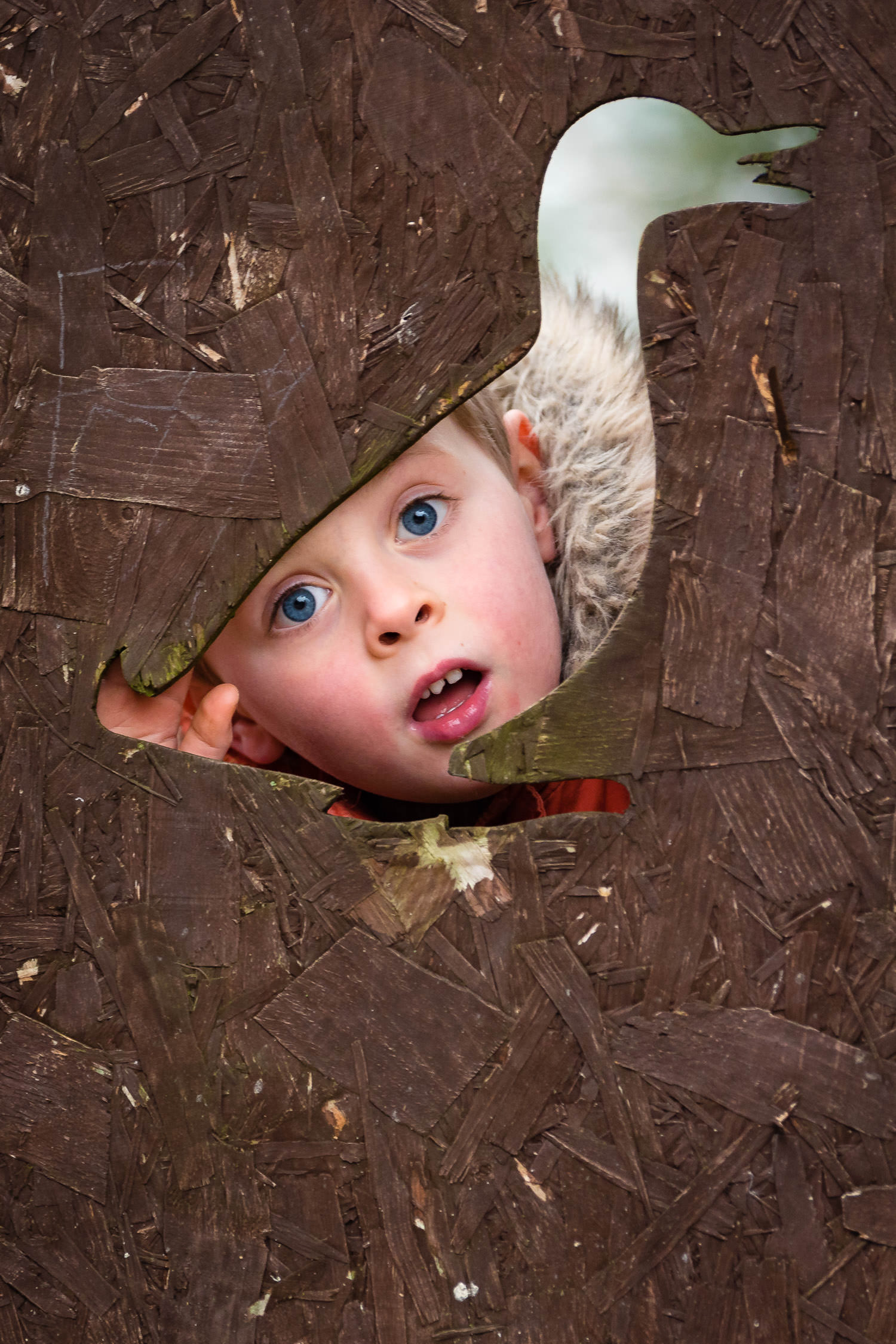 Boy looking through duck-shaped hole at nursery