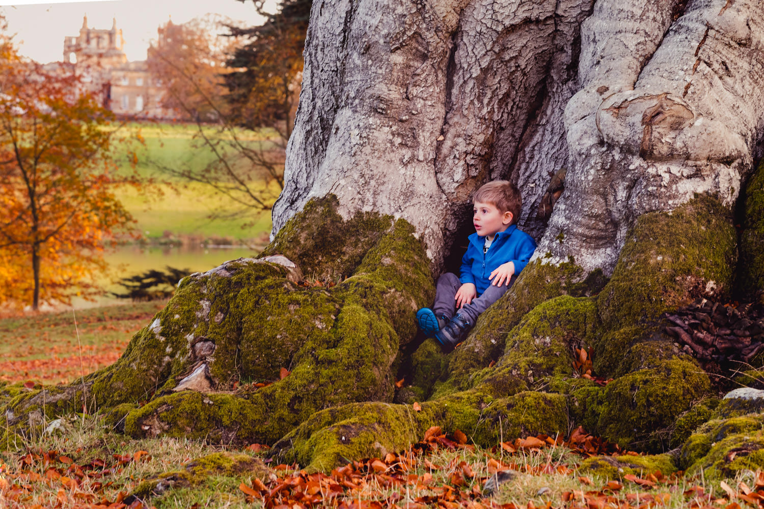 boy sat in foot of very large tree with autumn leaves and green moss