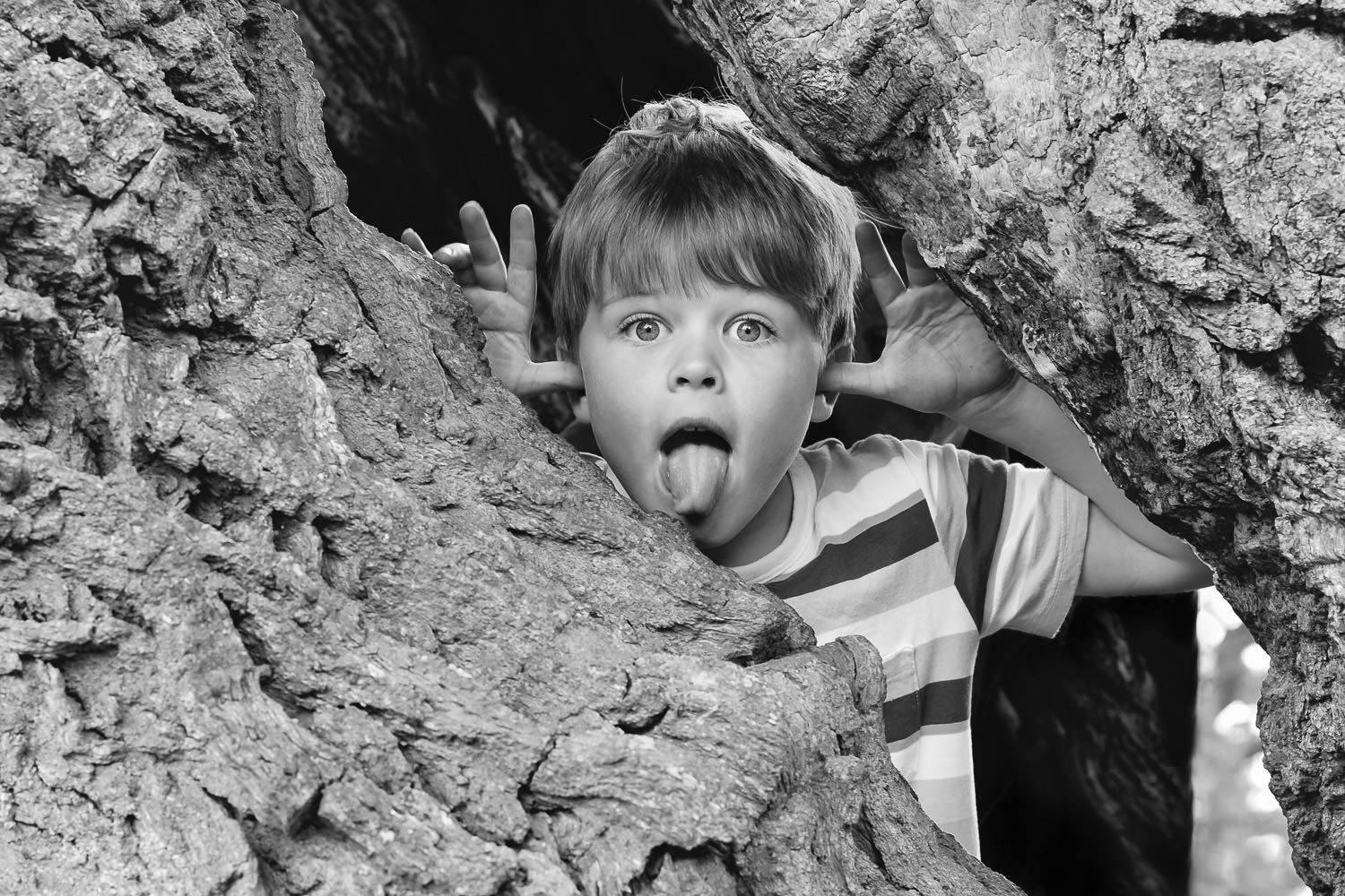 Boy peering through hollow tree trunk with eyes wide open and tongue out