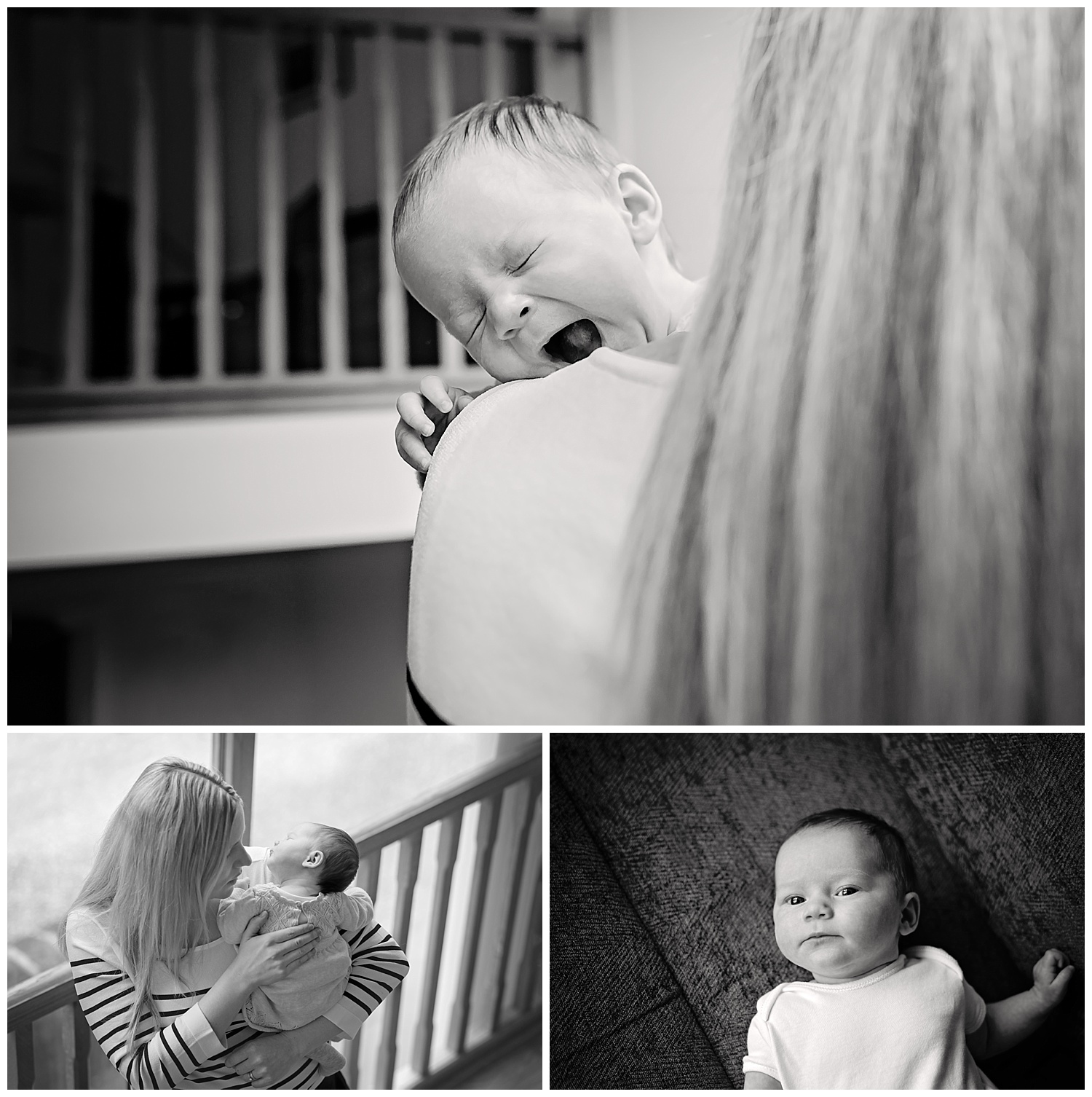 montage of black and white photos taken during a new born baby photo shoot with Alexandra Tandy Photography in Oxfordshire